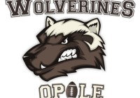 Wolverines Opole